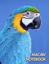 Macaw Notebook: Blue and Yellow Macaw - Ara ararauna - Composition Book 150 pages 8.5 x 11 in. - College Ruled - Writing Notebook - Li