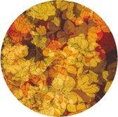 UBY Orangery vloerkleed   vinyl   300cmx300cm