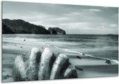 Glas schilderij Schelp, Strand | Grijs, Groen | 120x70cm 1Luik | Foto print op Glas |  F006539