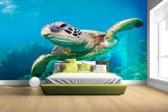FotoCadeau.nl - Zeeschildpad zwemmend in Hawai Fotobehang 380x265
