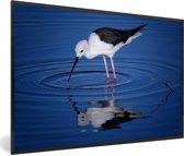 Foto in lijst - Steltkluut in donkerblauw water fotolijst zwart 60x40 cm - Poster in lijst (Wanddecoratie woonkamer / slaapkamer)