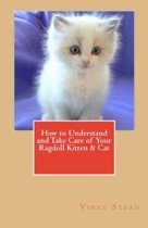 Boek cover How to Understand and Take Care of Your Ragdoll Kitten & Cat van Vince Stead (Onbekend)