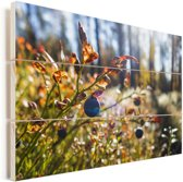 Blauwe bessen in een bos Vurenhout met planken 120x80 cm - Foto print op Hout (Wanddecoratie)