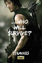 WALKING DEAD - Poster 61X91 - Daryl Survive
