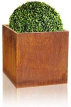cortenstaal kubus plantenbak 30cm