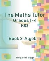 The Maths Tutor