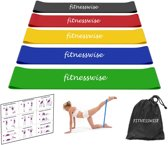 FITNESSWISE premium fitnesset, inclusief oefeninge