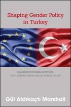 institutional change in turkey piran leila