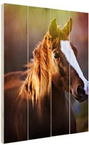 Portret van paard afdruk Hout 60x80 cm - Foto print op Hout (Wanddecoratie)