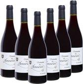 Domaine des Amouriers grenache, carignan, merlot, syrah, cinsault, caladoc Rode wijn - 6 x 75 cl