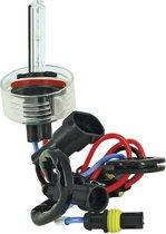 Evo Formance Xenonlamp H11 12 Volt 35 Watt 4300k Wit Per Stuk