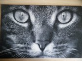 Deurmat 40x60 Kat Close-Up Black&White