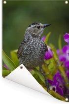 Dierenportret van een bruine prieelvogel op bloemen Tuinposter 120x180 cm - Tuindoek / Buitencanvas / Schilderijen voor buiten (tuin decoratie) XXL / Groot formaat!