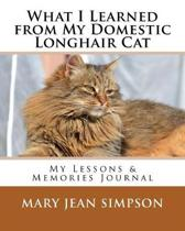 What I Learned from My Domestic Longhair Cat