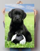 Reinders Poster Hond - Labrador voetbal - Poster - 61 × 91,5 cm