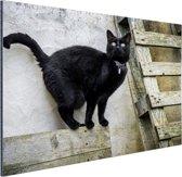 FotoCadeau.nl - Huiskat staat op een houten plank Aluminium 90x60 cm - Foto print op Aluminium (metaal wanddecoratie)
