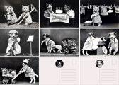 Ansichtkaarten - Nostalgia - Set van 7
