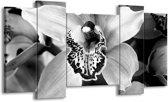 Schilderij | Canvas Schilderij Bloem | Zwart, Wit, Grijs | 120x65cm 5Luik | Foto print op Canvas