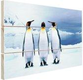 Drie pinguins portret Hout 60x40 cm - Foto print op Hout (Wanddecoratie)