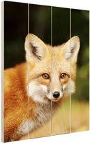 FotoCadeau.nl - Jonge rode vos Hout 60x80 cm - Foto print op Hout (Wanddecoratie)