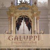 Galuppi: Organ Sonatas