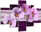 Glasschilderij Orchidee | Paars, Wit | 100x70cm 5Luik | Foto print op Glas |  F005621