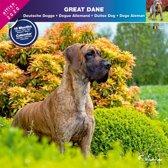Duitse Dog Kalender 2020