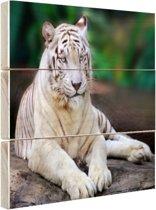 Witte tijger Hout 120x80 cm - Foto print op Hout (Wanddecoratie)