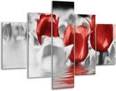 Glasschilderij Tulpen | Grijs, Rood | 100x70cm 5Luik | Foto print op Glas |  F002925