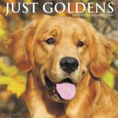 Just Goldens 2019 Wall Calendar (Dog Breed Calendar)