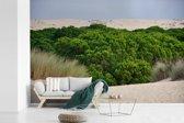 Fotobehang vinyl - Pijnbomen tussen de duinen in het Nationaal park Doñana in Spanje breedte 360 cm x hoogte 240 cm - Foto print op behang (in 7 formaten beschikbaar)