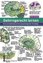 Gehirngerecht lernen (E-Book)