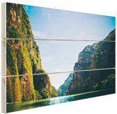 Sumidero Canyon Mexico Hout 80x60 cm - Foto print op Hout (Wanddecoratie)