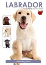 Labrador DVD