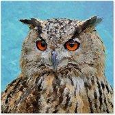 Outdoor Canvas Schilderij - Uil - Vogel