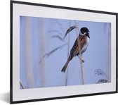 Foto in lijst - Een sneeuwgors staat op een stukje tarwe fotolijst zwart met witte passe-partout klein 40x30 cm - Poster in lijst (Wanddecoratie woonkamer / slaapkamer)
