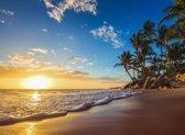 Papermoon Tropical in beach Sunrise Vlies Fotobehang 200x149cm 4-Banen