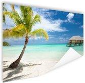 Palm en hutten op tropisch eiland Poster 120x80 cm - Foto print op Poster (wanddecoratie woonkamer / slaapkamer) / Zee en Strand