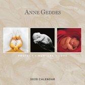 Anne Geddes Kalender 2020