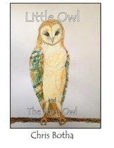 Little Owl and the Barn Owl