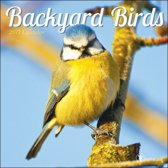 Backyard Birds 2017 Calendar
