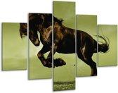 Glasschilderij Paard | Bruin, Groen, Zwart | 100x70cm 5Luik | Foto print op Glas |  F002667