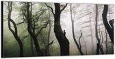 Dibond –In het Bos– 200x100cm Foto op Aluminium (Wanddecoratie van metaal)