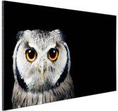 Close-up uil Aluminium 120x80 cm - Foto print op Aluminium (metaal wanddecoratie)
