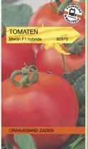 Oranjeband Zaden Tomaat Morane F1