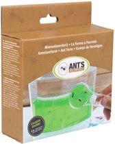 Mierenboerderij Gel inclusief ledlicht en kortingscoupon voor mieren