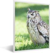 Foto in lijst - Een Bengaalse oehoe zit in het groene gras fotolijst wit 30x40 cm - Poster in lijst (Wanddecoratie woonkamer / slaapkamer)