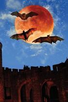 Blood Bat Moon Notebook