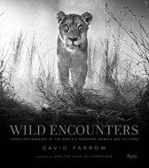 Boek cover Wild Encounters van David Yarrow (Hardcover)