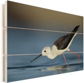 Steltkluut drinkt water Vurenhout met planken 30x20 cm - klein - Foto print op Hout (Wanddecoratie)
